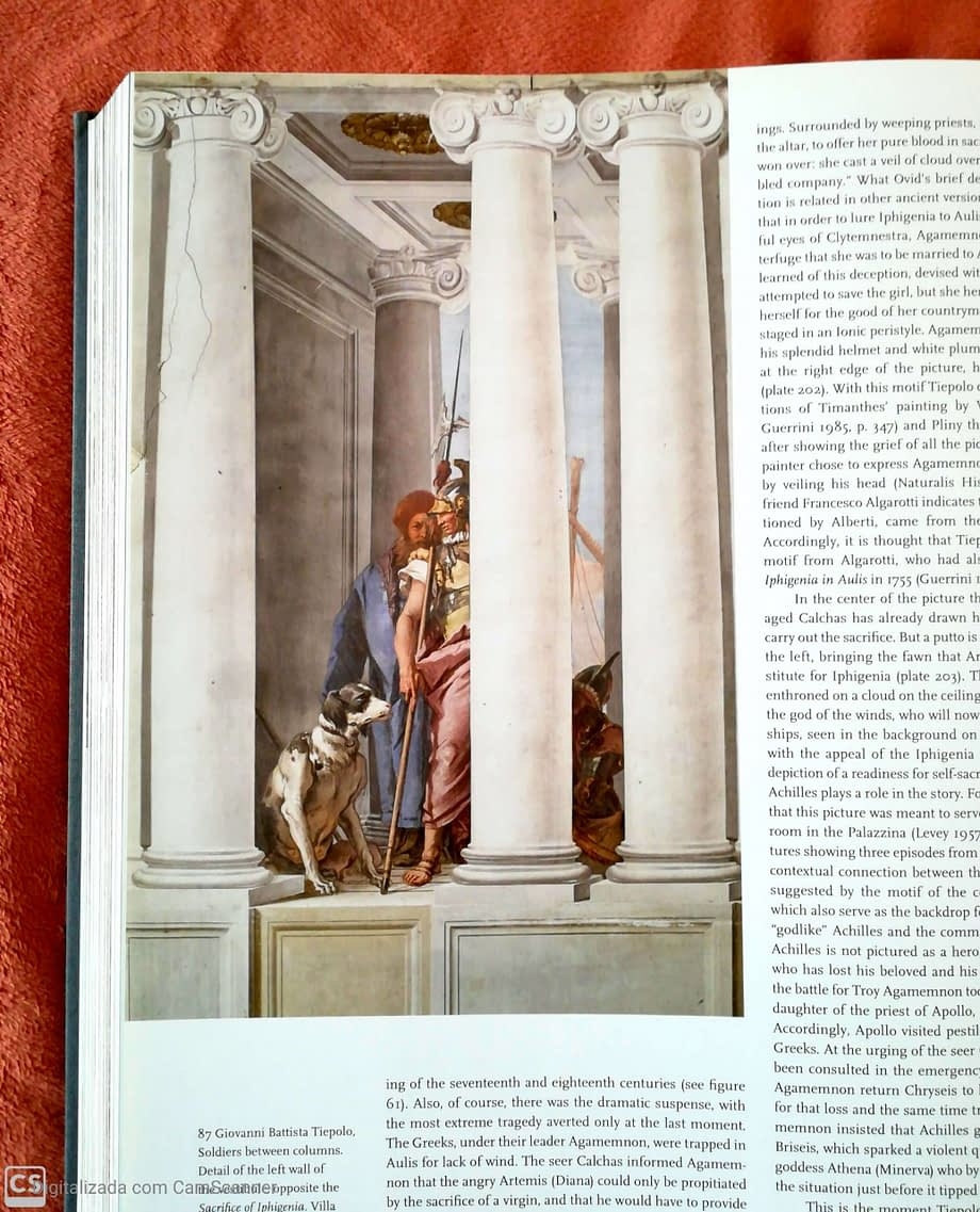 https://artbooks4u.com/book/italian-frescoes-vol-i-the-age-of-giotto-vol-ii-the-early-renaissance-vol-iii-the-flowering-of-the-renaissance-vol-iv-high-renaissance-and-mannerism-vol-v-the-baroque-era/